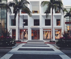 hermes, luxury, and palms image