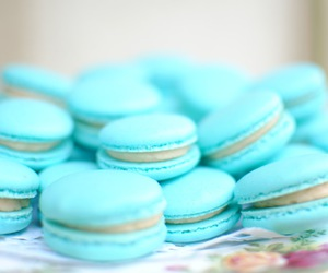 blue, food, and macaroons image