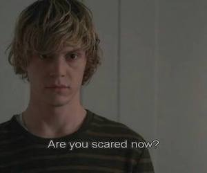 ahs, american horror story, and tate image