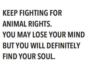 animal rights, never give up, and equality image