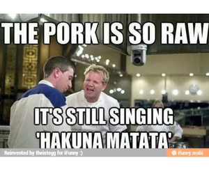 funny, gordon ramsay, and insult image