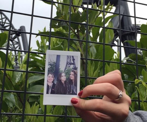 poloroid, rollercoaster, and theme park image