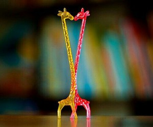 giraffe, love, and yellow image
