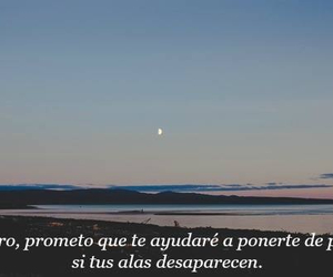 frases, feelings, and Alas image