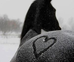 horse, heart, and snow image