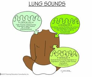 medicine, nursing, and respiratory image