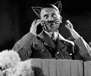 hitler and kitty image