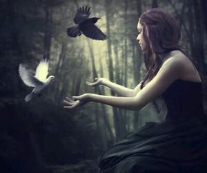 girl, bird, and dark image