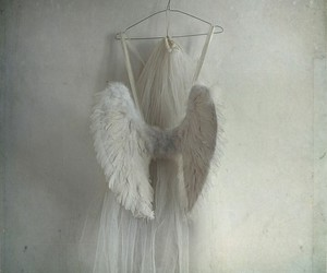 angel, wings, and white image