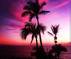 beach, pink, and cool image
