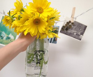 yellow, flowers, and pale image