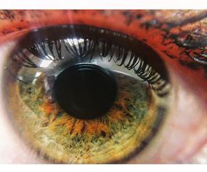 eye, macro, and pretty image