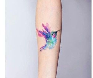 tattoo, bird, and watercolor image