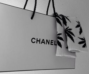 bags, chanel, and like image