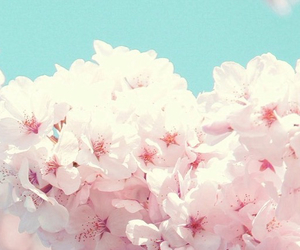 flowers, happy, and nature image