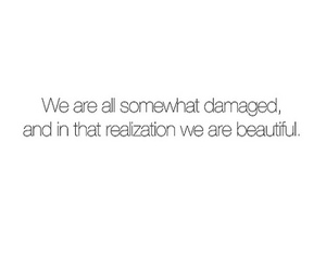 beautiful, damaged, and typography image