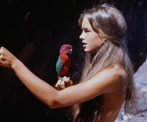 girl, parrot, and brooke shields image