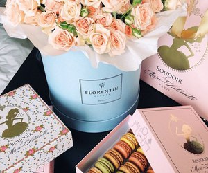 beautiful, roses, and macaroon image