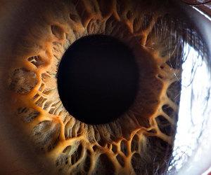 eye, eyes, and photography image