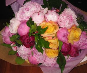 couleurs, Fleurs, and roses image