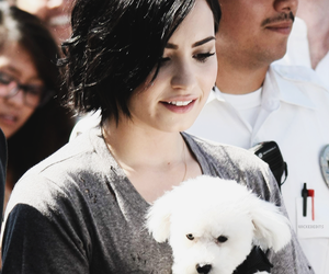 beautiful, demi lovato, and stay strong image