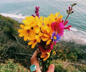 flowers, sea, and beach image