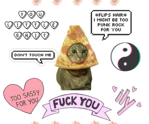 cat, overlay, and pizza image
