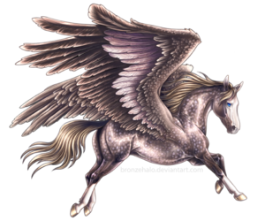 horse, wings, and pegasus image