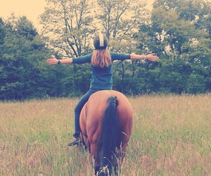 freedom, horses, and pferde image