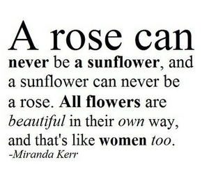 rose, quote, and sunflower image