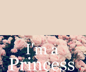 princess, flowers, and pink image