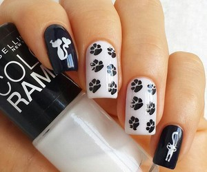 cat, nails, and black image