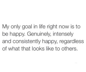 goal, happiness, and i really dont care image