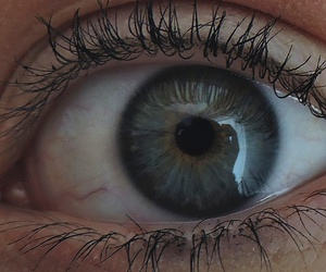 blue, eye, and look image