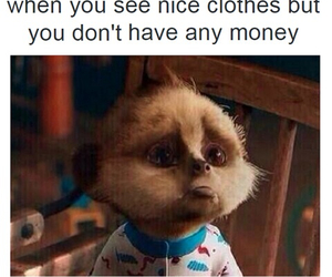 funny, money, and clothes image