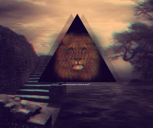 lion, triangle, and cool image