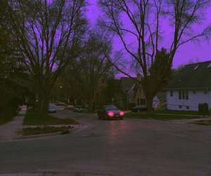 glow, nature, and suburbia image