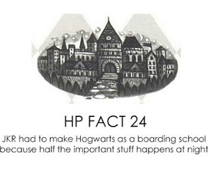 harry potter, curiosity, and fact image