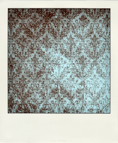 floral, polaroid, and vintage image