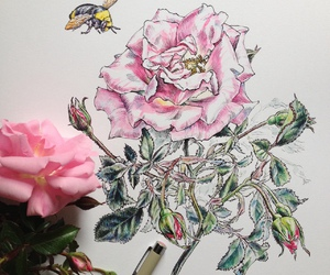 art, bee, and drawing image
