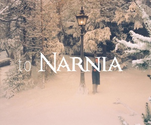 narnia, snow, and photography image