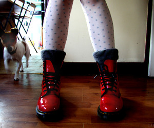 doc martens, dog, and fashion image
