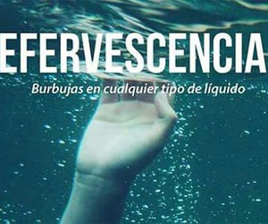 efervescencia, bubbles, and words image
