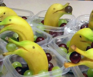 bananas, dolphins, and diy image