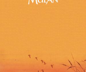 disney and mulan image