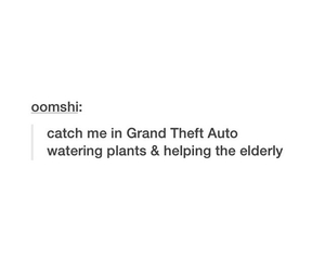 tumblr, funny, and grand theft auto image