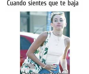 frases, funny, and miley cyrus image