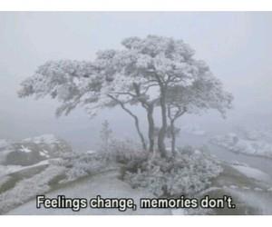 feelings, life, and memories image