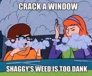 weed, funny, and shaggy image