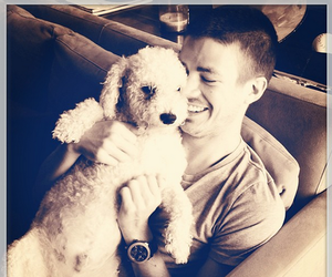 dog, grant, and gustin image